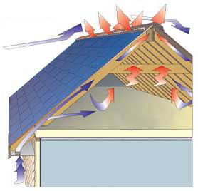 attic vents your roof